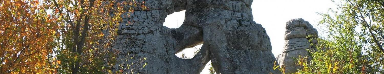 Le bois de Païolive