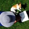 Les animaux : une compagnie pleine de bienfaits