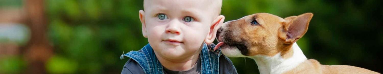 Pour que Médor et Bébé ne soient pas comme chien et chat…