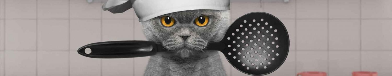 Pour un chat bien dans son assiette…